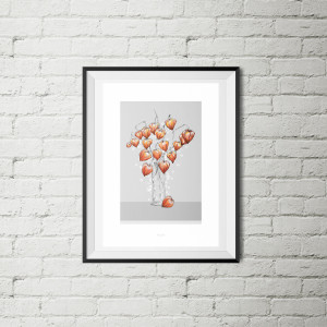 Poster A3 A4 Illustration of Wintercherries Kinalykter oransje blomster